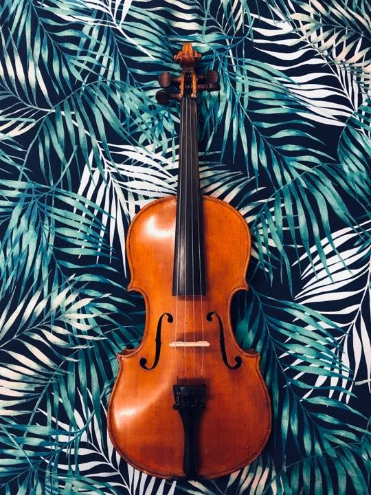 Ищу информацию о скрипке